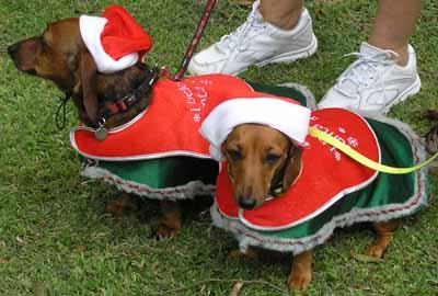 They believe in Santa