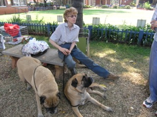 Stephany sitting with their beloved dogs at a KCH show in 2008.